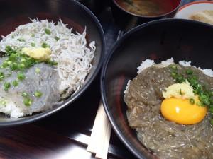 yumashirasuimage (11)