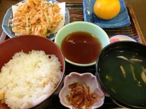 yumasakuraebiimage (2)