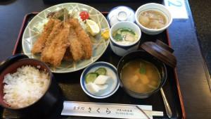 chogesakuraIMG_0993